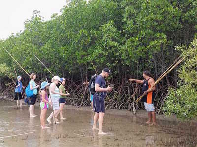 Daintree Dreaming - Kuku Yalanji Coastal Walk